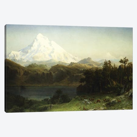 Mount Hood in Oregon,  Canvas Print #BMN5856} by Albert Bierstadt Canvas Print