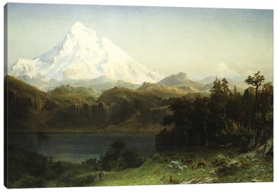 Mount Hood in Oregon,  Canvas Art Print