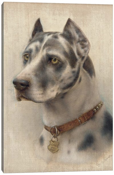 The Head of a Doberman  Canvas Art Print
