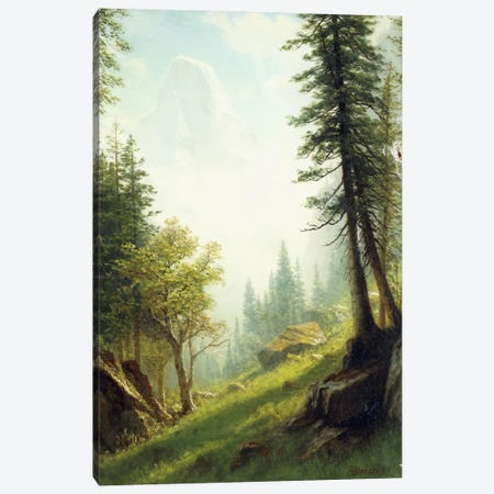 Among the Bernese Alps,  Canvas Print #BMN5991} by Albert Bierstadt Art Print