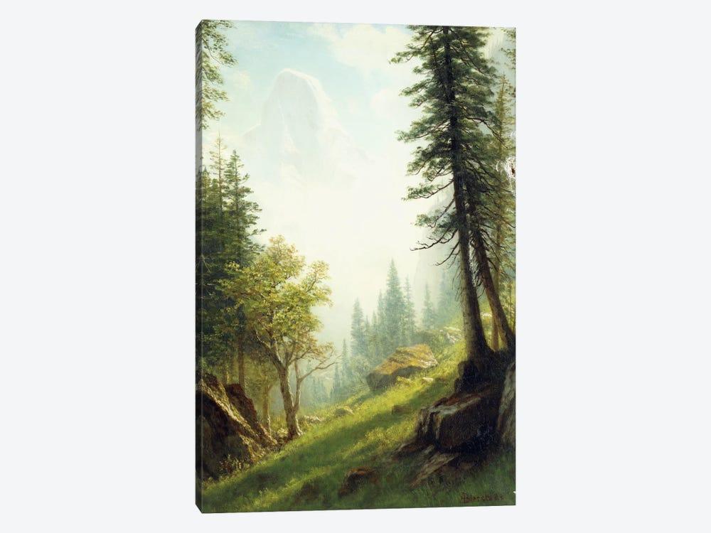 Among the Bernese Alps,  by Albert Bierstadt 1-piece Canvas Art Print