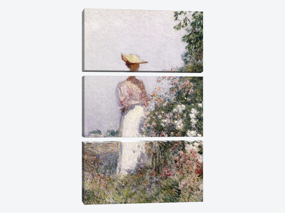 Lady in Flower Garden,  by Childe Hassam 3-piece Canvas Print