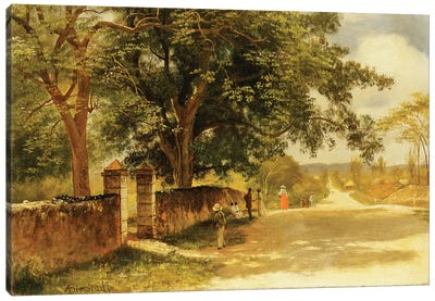 Street in Nassau, c.1878  Canvas Art Print