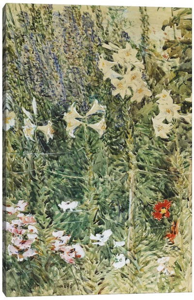 Larkspurs and Lillies, c. 1894  Canvas Print #BMN5997