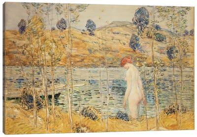 The River Bank, 1906  Canvas Art Print