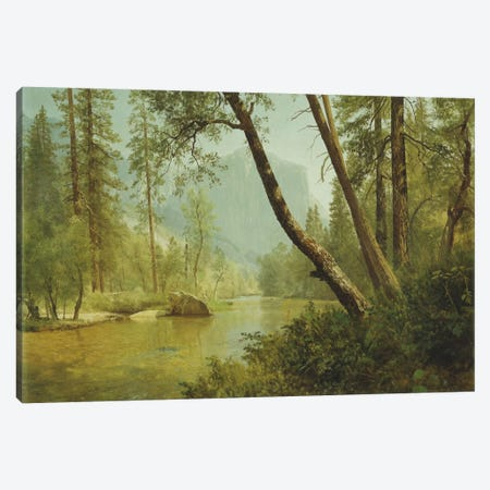 Sunlit Forest  Canvas Print #BMN6006} by Albert Bierstadt Canvas Art