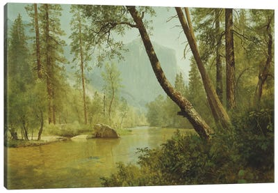 Sunlit Forest by Albert Bierstadt Canvas Art