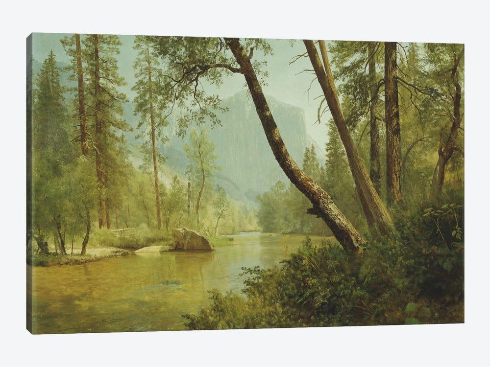 Sunlit Forest  by Albert Bierstadt 1-piece Art Print