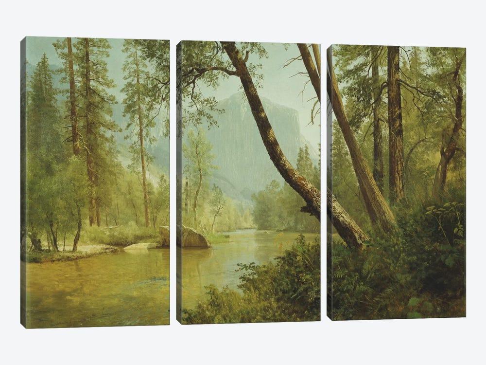 Sunlit Forest  by Albert Bierstadt 3-piece Canvas Print