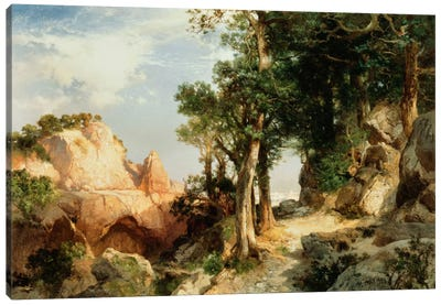 On the Berry Trail - Grand Canyon of Arizona, 1903  Canvas Art Print