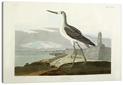 Greenshank, View of the St, 1835 Canvas Art Print