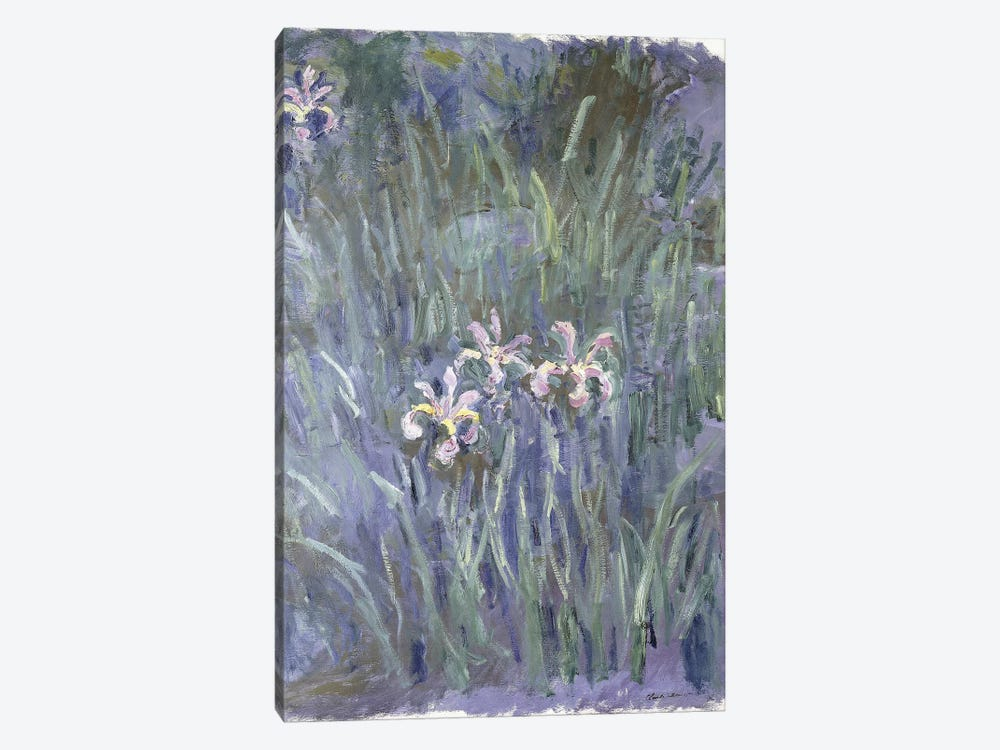 Iris, c.1914-1917  by Claude Monet 1-piece Art Print