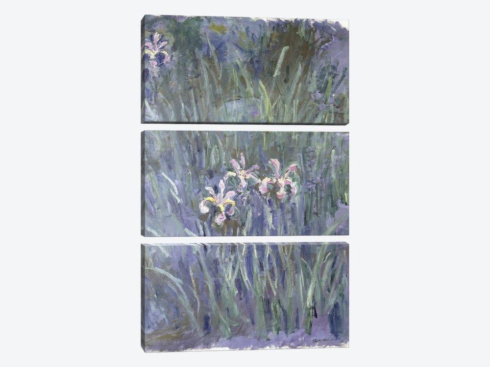 Iris, c.1914-1917  by Claude Monet 3-piece Art Print