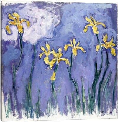Yellow Iris with Pink Cloud, c.1918  Canvas Print #BMN6046