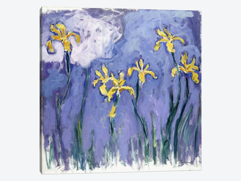 Yellow Iris with Pink Cloud, c.1918  by Claude Monet 1-piece Art Print