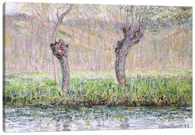Spring, Willows, 1885  Canvas Art Print