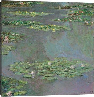 Water Lilies, 1905  Canvas Art Print