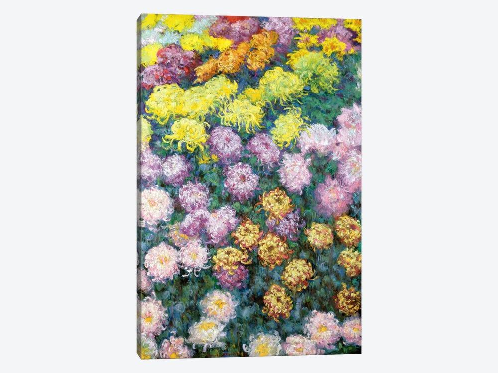 Massif de Chrysanthemes, 1897  by Claude Monet 1-piece Canvas Art Print