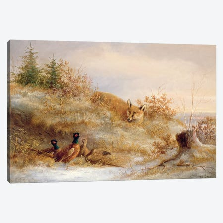 Fox and Pheasants in Winter  3-Piece Canvas #BMN611} by Unknown Artist Canvas Art Print