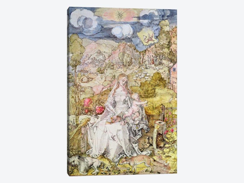Madonna and Child  by Albrecht Dürer 1-piece Art Print
