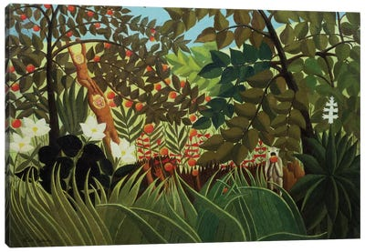 Exotic Landscape (Suzuki Collection) Canvas Print #BMN6284