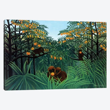 Monkeys In The Jungle, 1910 Canvas Print #BMN6297} by Henri Rousseau Canvas Art Print