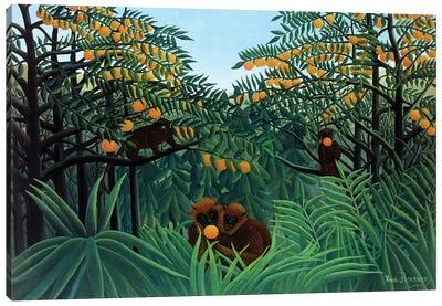 Monkeys In The Jungle, 1910 Canvas Art Print