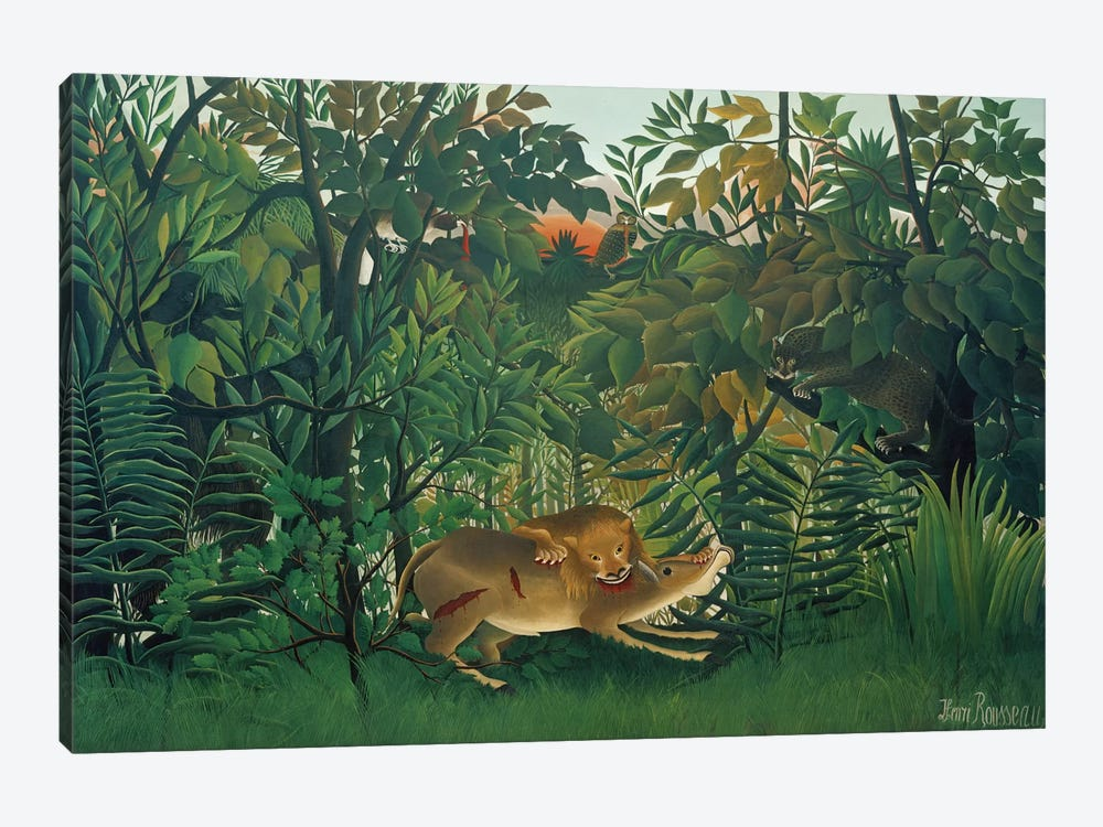 The Hungry Lion, 1905 by Henri Rousseau 1-piece Art Print