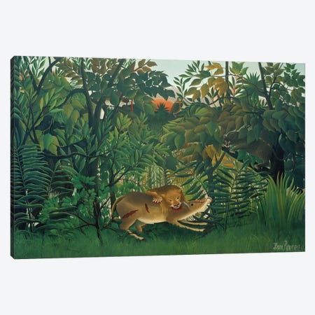 The Hungry Lion, 1905 Canvas Print #BMN6324} by Henri Rousseau Canvas Art Print