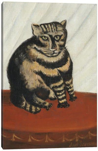 The Tabby Canvas Art Print