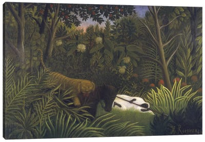 Tiger Attacking A Hores And A Sleeping Black Man Canvas Print #BMN6337