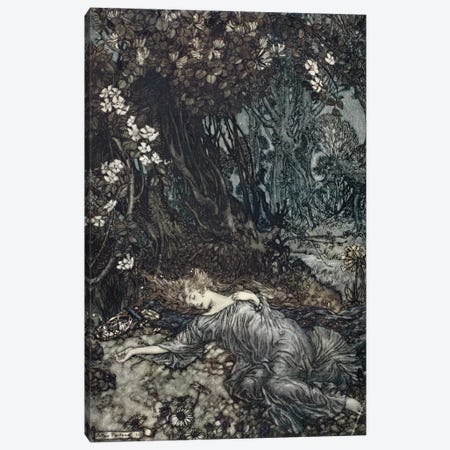 Tatiana Lying Asleep (Illustration From William Shakespeare's A Midsummer Night's Dream), 1908 Canvas Print #BMN6361} by Arthur Rackham Canvas Art