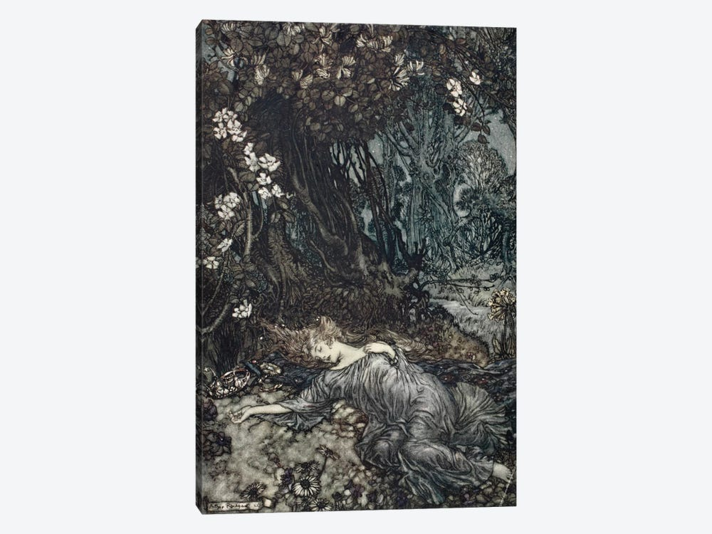 Tatiana Lying Asleep (Illustration From William Shakespeare's A Midsummer Night's Dream), 1908 by Arthur Rackham 1-piece Canvas Wall Art
