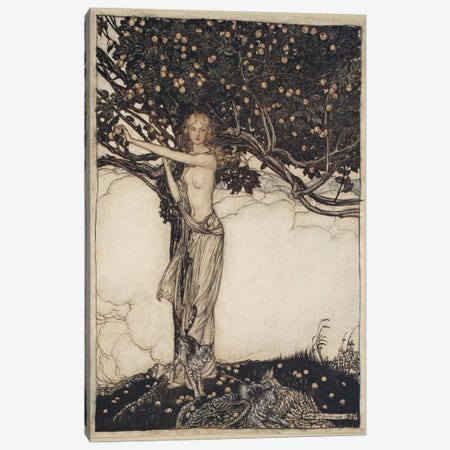 Freia, The Fair One (Illustration From Richard Wagner's The Rhinegold & The Valkyrie), 1910 Canvas Print #BMN6367} by Arthur Rackham Canvas Art Print