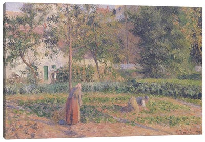 Vegetable Garden at the Hermitage, Pontoise, 1879  Canvas Art Print