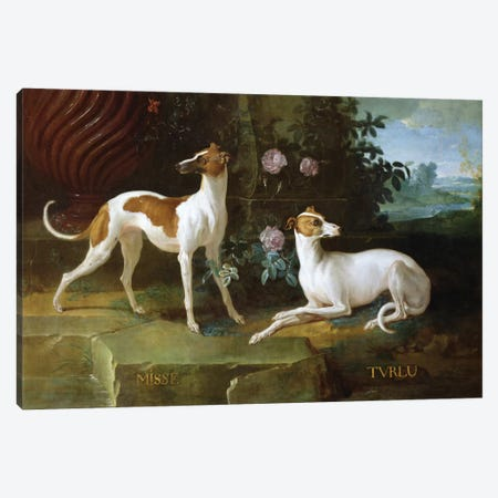 Misse And Turlu, Two Greyhounds Of Louis XV Canvas Print #BMN6388} by Jean-Baptiste Oudry Canvas Wall Art