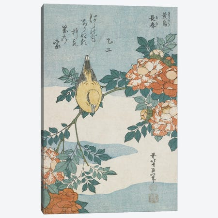 Black-Naped Oriole And China Rose, c.1833 Canvas Print #BMN6391} by Katsushika Hokusai Art Print