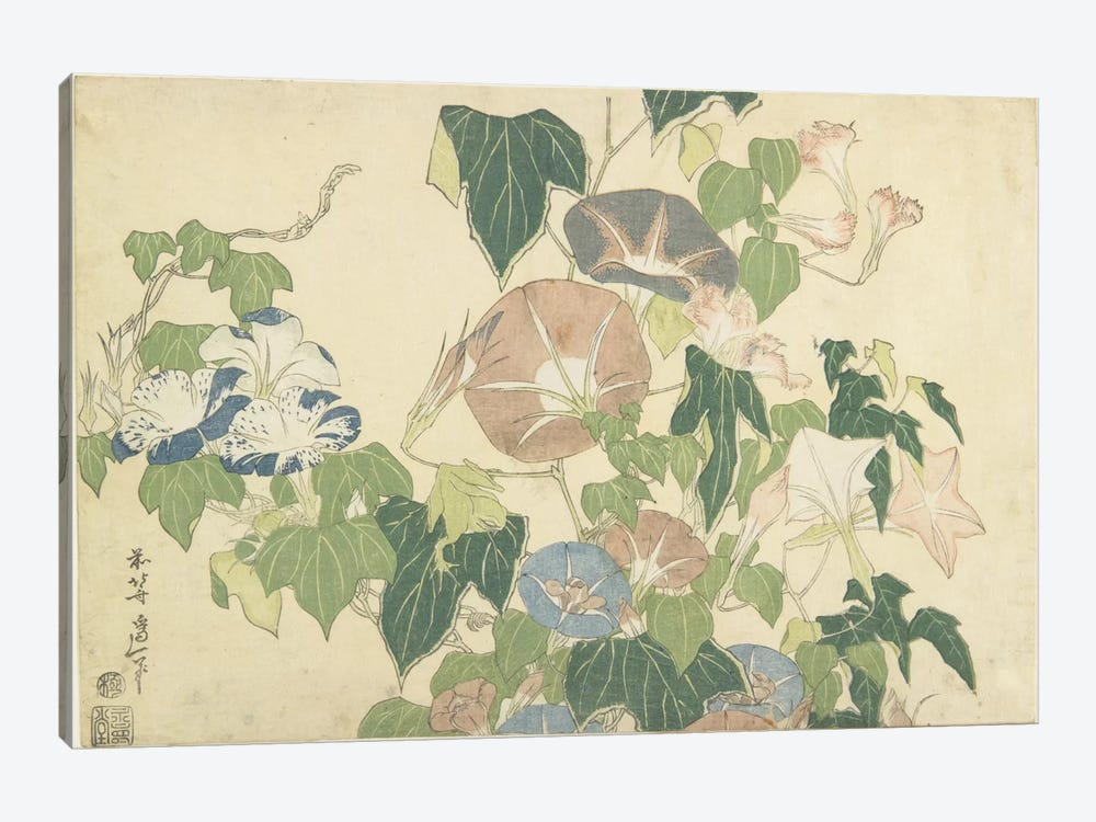 Frog And Morning Glories, c.1832 1-piece Canvas Wall Art