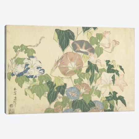Frog And Morning Glories, c.1832 Canvas Print #BMN6392} by Katsushika Hokusai Art Print