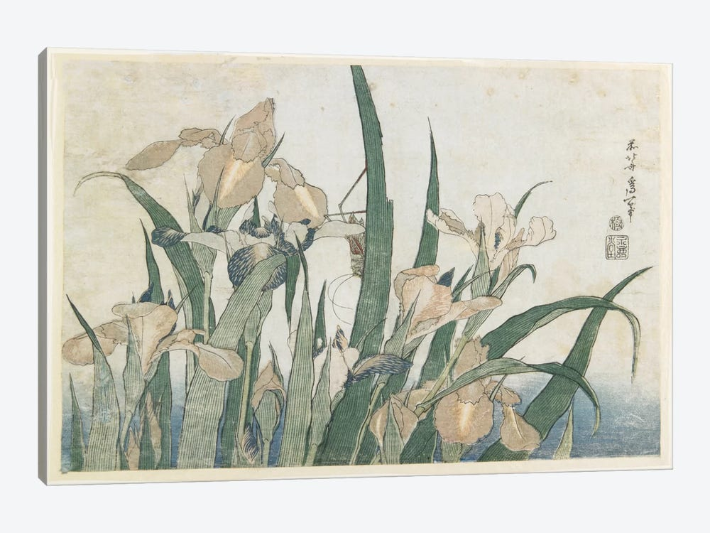 Iris Flowers And Grasshopper, c.1830-31 by Katsushika Hokusai 1-piece Canvas Art Print