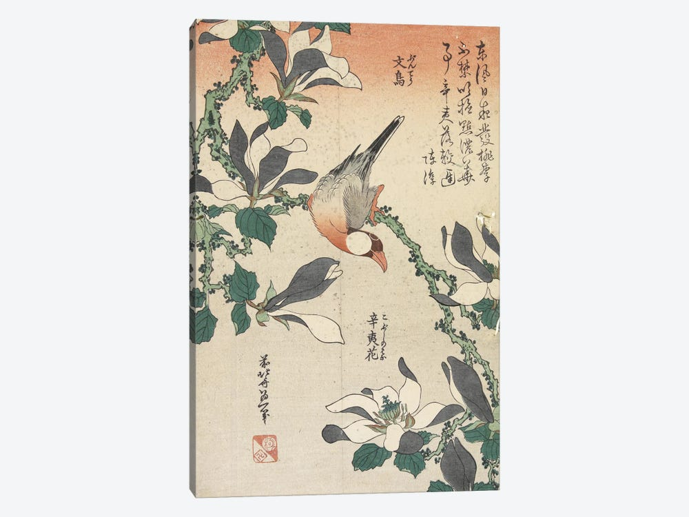 Java Sparrow And Magnolia by Katsushika Hokusai 1-piece Canvas Art