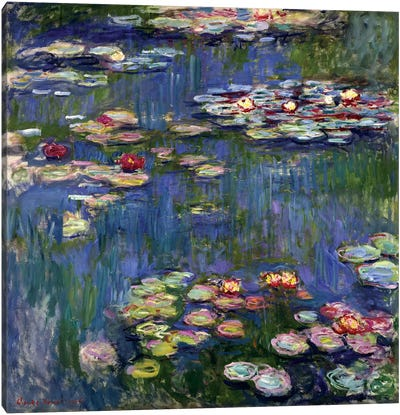 Water Lilies, 1916 Canvas Print #BMN6416
