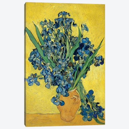 Irises, 1890 Canvas Print #BMN6430} by Vincent van Gogh Canvas Wall Art