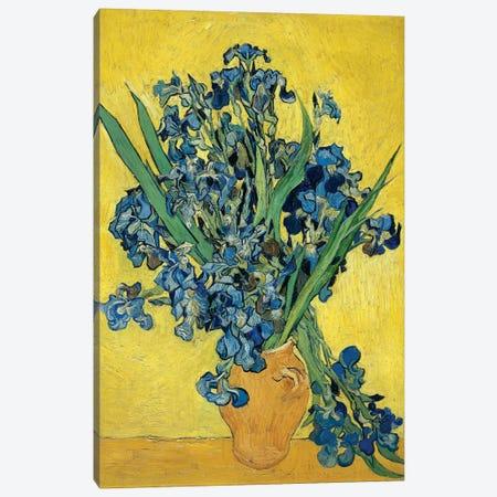 Irises, 1890 Canvas Print #BMN6430} by Vincent van Gogh Canvas Wall Art