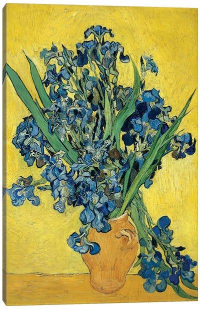 Irises, 1890 Canvas Art Print