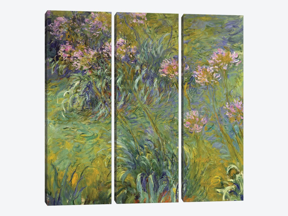 Agapanthus, 1914-26 by Claude Monet 3-piece Canvas Art Print