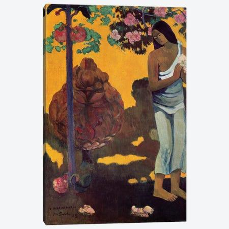 Te Avae No Maria (Month Of Mary), 1899 Canvas Print #BMN6494} by Paul Gauguin Art Print
