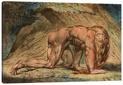 Nebuchadnezzar, 1795 Canvas Print #BMN6521