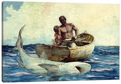 Shark Fishing, 1885 Canvas Art Print