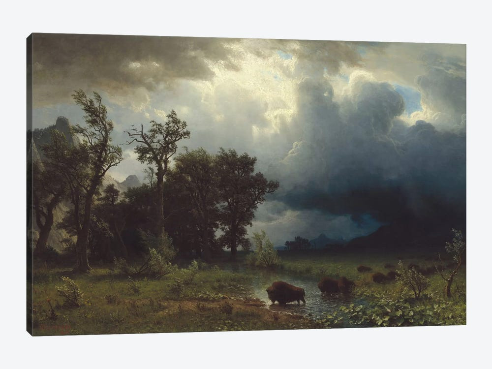 Buffalo Trail: The Impending Storm, 1869 1-piece Art Print